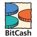 BitCash EX通用货币 bc点卡充值卡